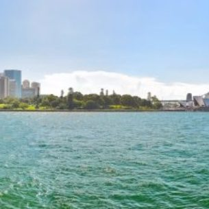 View of Sydney Harbor in a sunny day